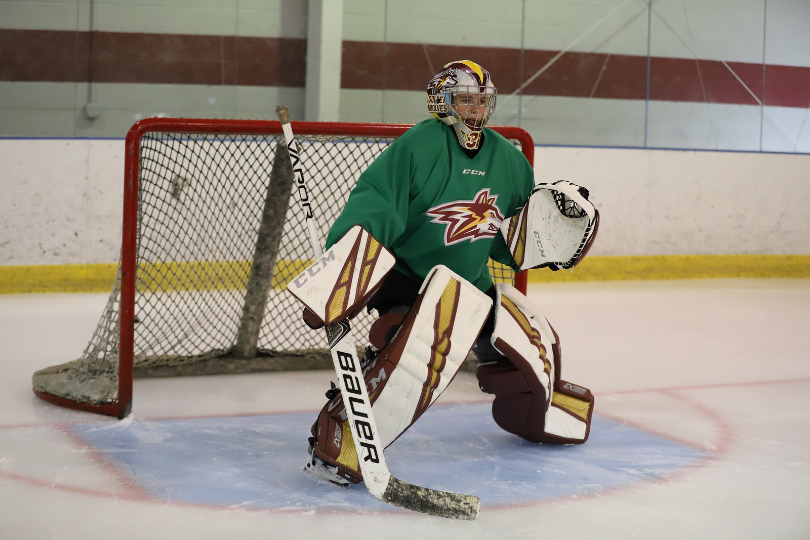 Alvernia Women's Hockey Goaltender